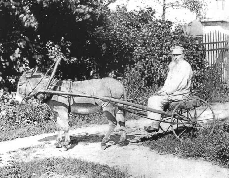 Афанасий Афанасьевич Фет в своем имении Воробьёвка, 1890 г.