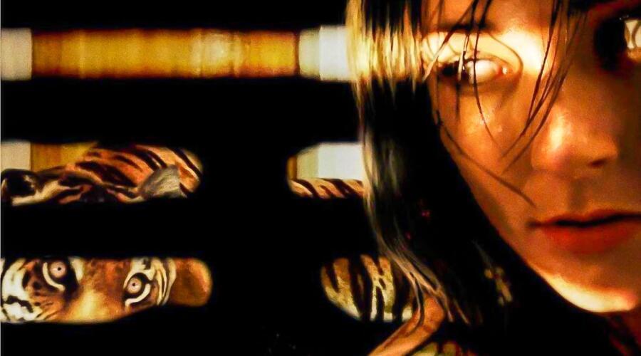 Кадр из к/ф «Во власти тигра», 2010 г.