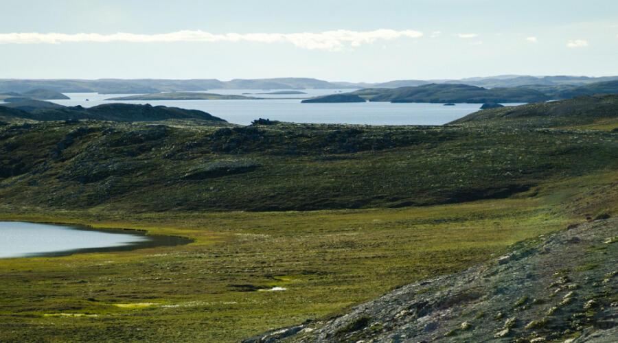 Кусова Земля — относительно крупный остров архипелага Новая Земля