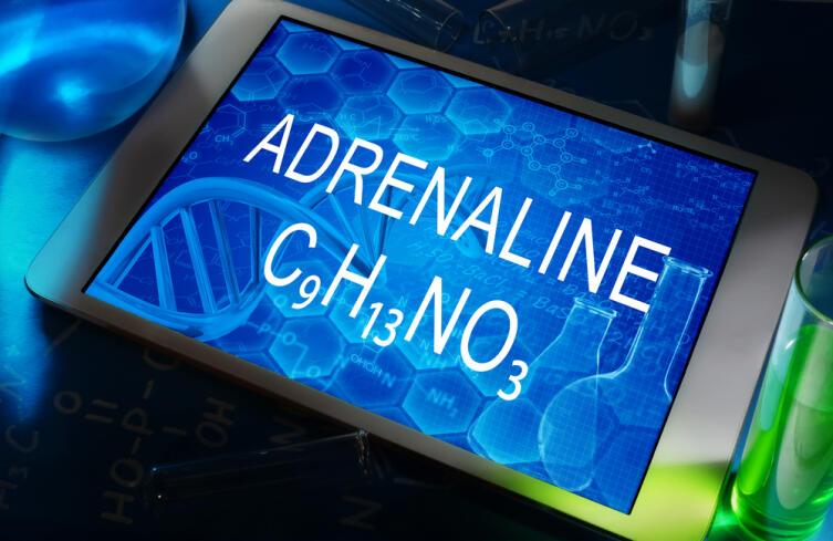 Как адреналин работает в организме?