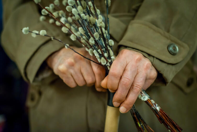 Вербные веточки применялись в старину как лекарство и как оберег от бед