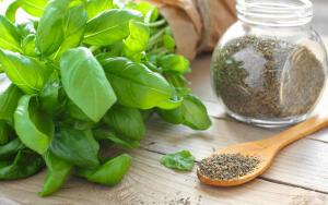 Какие пряные растения можно выращивать в домашних условиях?