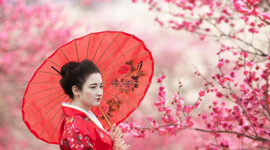 Японские гейши. Кто они?