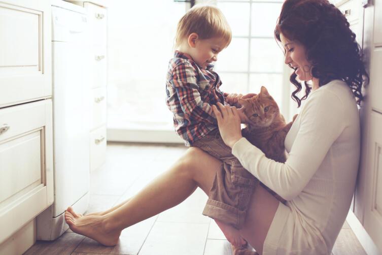 Ставить главой семьи несознательное, пусть и очень любимое, создание — безответственно
