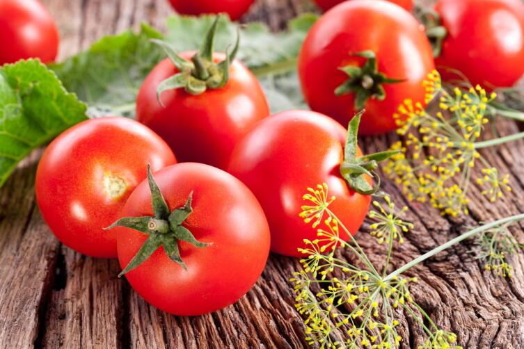 Настоящая степная помидора пахнет помидорной ботвой
