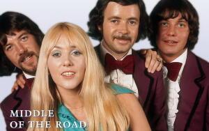 Хиты группы MIDDLE of the ROAD: как была написана весёлая песня о... брошенном птенце?