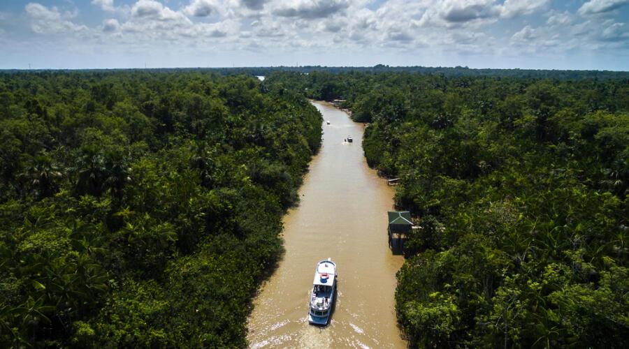 Амазонка в Бразилии