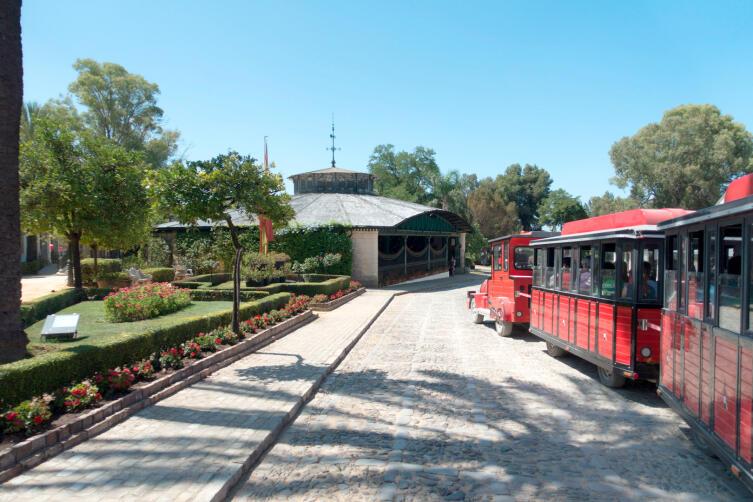 Мини-поезд с туристами на винодельне