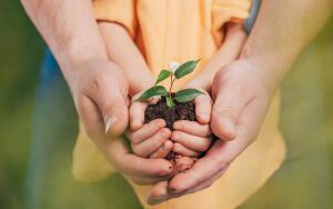 Как повлиять на экологическую обстановку в стране?