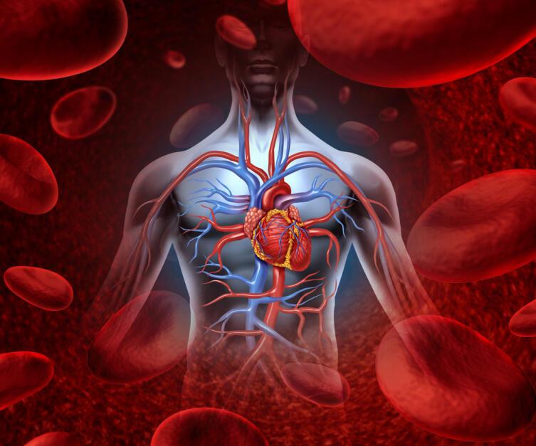 Чем человек полнее, тем больше организм производит холестерина