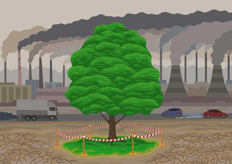 Влияние лесов позволяет сдерживать антропогенное увеличение концентрации СО2 в атмосфере