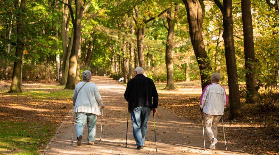Чем ходьба отличается от бега и всегда ли она полезна?