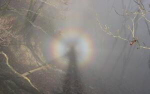 Какие оптические явления бывают на Земле?