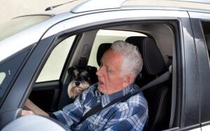Запретят ли пенсионерам садиться за руль?