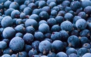 Дары сада-огорода – традиционный источник витаминов летом...