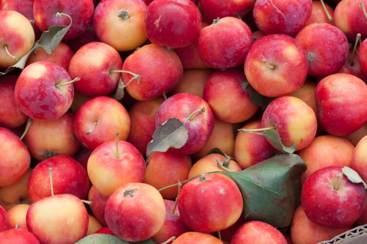 Как я пробовал готовить по-индийски яблочное варенье?