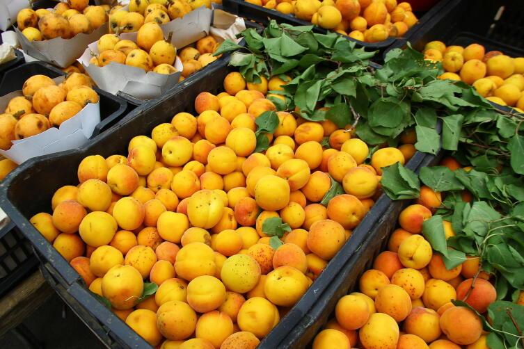 Свежие плоды абрикоса обыкновенного