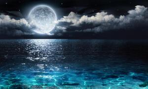 Лунный календарь красоты на август: какие дни благоприятны для стрижки?