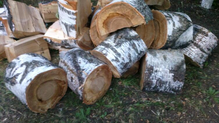 Колоды дров