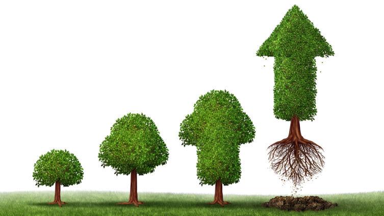 Что за метод такой  — «Дерево целей»?
