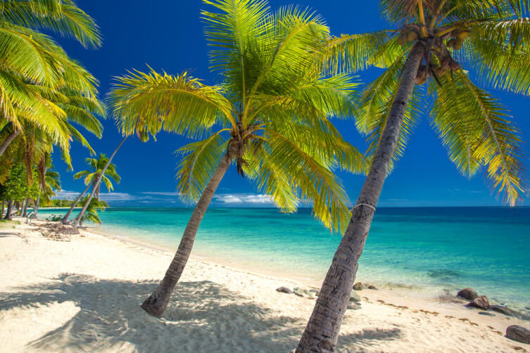 Пустынный пляж с кокосовыми пальмами на Фиджи
