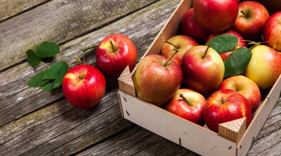 Как хранить свежие яблоки?