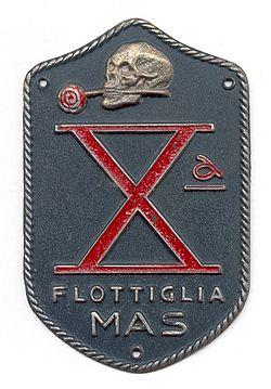 Эмблема 10-й флотилии МАС