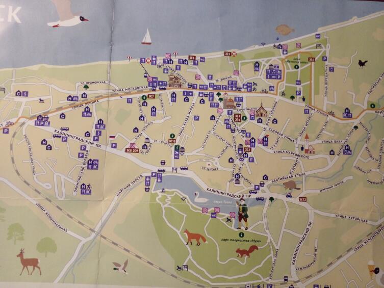 Карта-схема Светлогорска