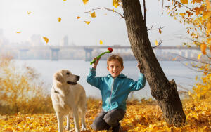 Какой бывает преданность у людей и собак?