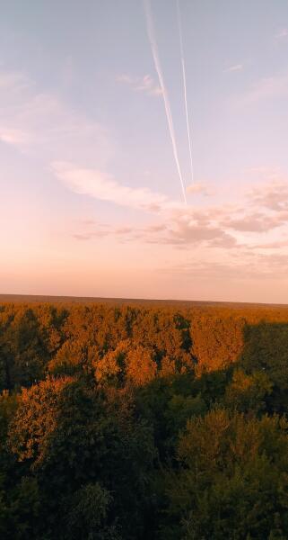 Путешествие по Беларуси. Почему Бобруйск — высококультурный город?