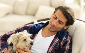 Как не ошибиться в выборе породы собаки?