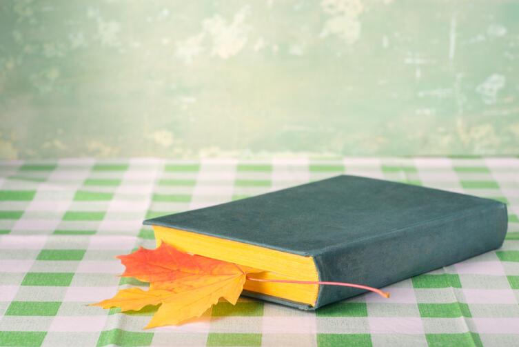 Что почитать осенними вечерами?