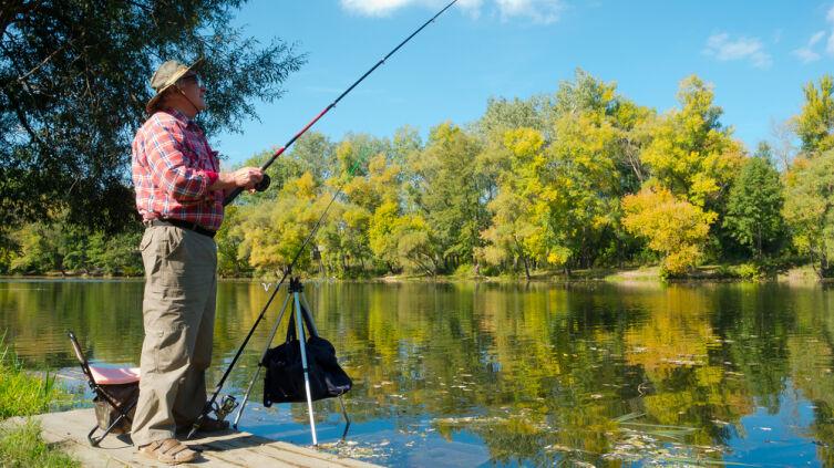 Как мотыльки могут пригодиться для рыбалки?