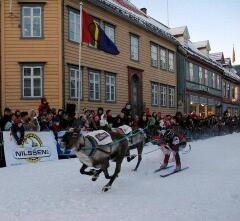 Оленьи игры в норвежском Трумсё