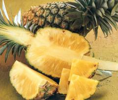 Как вырастить ананас на подоконнике?