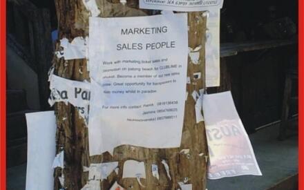 Бэкпэкеру не составит труда найти работу промоутера. Объявления о найме расклеены на стволах пальм, заменяющих в PP-центре инфодоски.