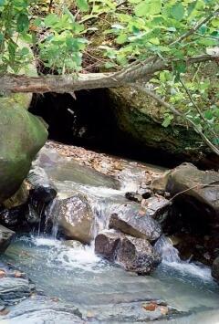 Выше второго водопада Свирь - скромный ручеек среди камней