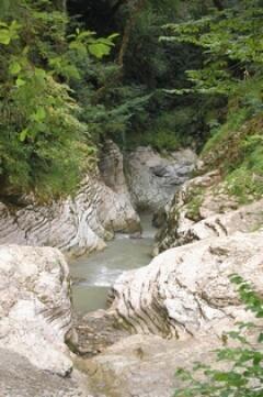 Река Псахо - приток говорливой Кудепсты