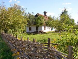 Вот так и сейчас выглядит украинское село. Очень похоже на ту хату, где мы жили. А сейчас она стоит пустая...
