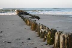 Знаменитые балтийские сваи-пескозадержатели