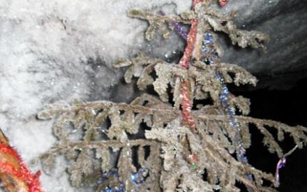 В ледяной пещере елка ждет Деда Мороза