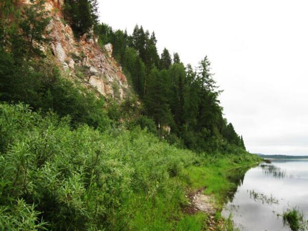 Берег реки Пинеги