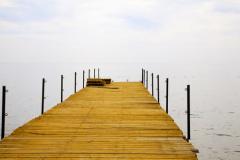 Импринт и импринтинг в психологии: что полезно об этом знать?
