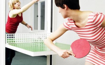 http://www.gizmag.com/ping-pong-door/12229/