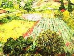 Винсент ван            Гог. Поле цветущего мака