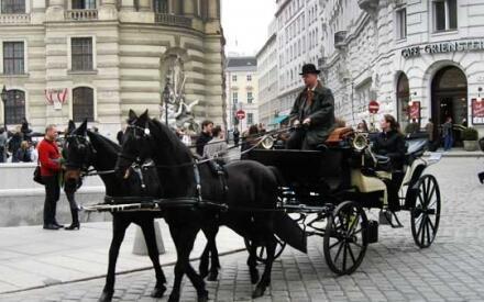 Конный экипаж в центре Вены