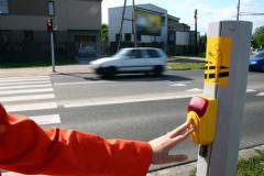 Водители и пешеходы: как всем ужиться на дороге? Учим правила...