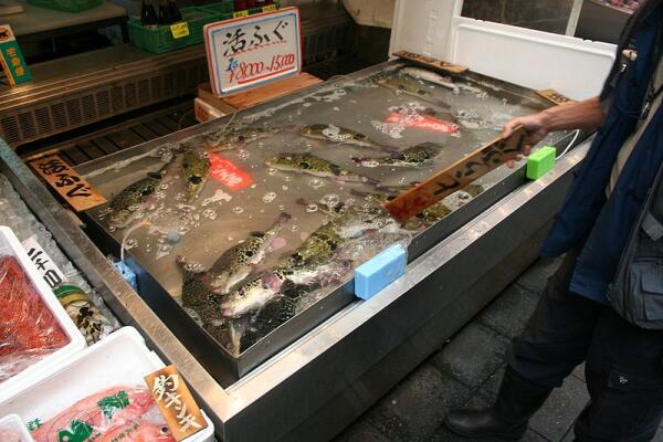 Фугу в продаже (Осака)