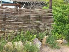 """Живая изгородь: как сделать ограду  """"из ничего """" и даром?"""