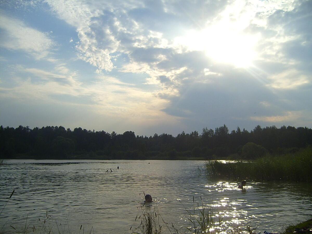 пруд пруди: